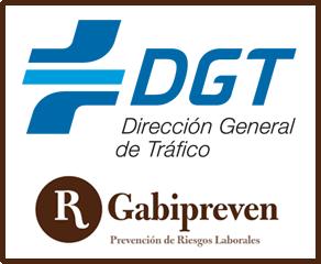 gestion_dgt_logo